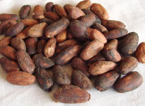 frutas-de-origem-brasileira-banana-laranja-e-cacau-1