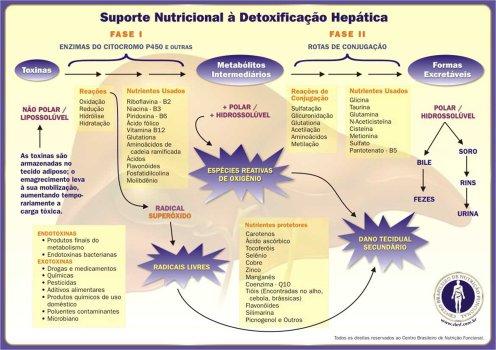 Suporte_Nutricional_Detoxificacao
